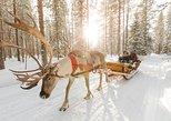 Lapland Reindeer Safari from Rovaniemi