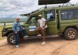1 Day Safari to Akagera national park