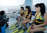 Guided Snorkeling from Dive Boat