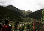 Asia - Bhutan: Bhutan West View Lush passes