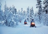 2 hour snowmobile tour