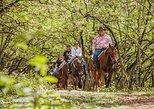 1 Hour Scenic Horseback Ride