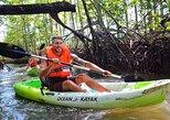 Mangrove Kayak and Waterfall Experience!!