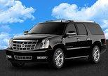 Private Departure Transfer: Hotel to Southwest Florida International Airport, Fort Myers, FL, ESTADOS UNIDOS