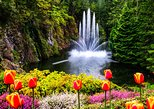 Private Tour Countryside Roads to Butchart Gardens and City Tour