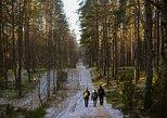 One Day Hiking Tour With Sauna