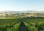 Australia & Pacific - New Zealand: A Waipara Wine Experience with Giles Tours, includes wine tastings and lunch