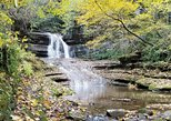 Guided 2 Mile Hike Through Kentucky Palisades and the Boone Creek Gorge