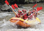 Bali White Water Rafting with Red Paddle