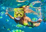 Bali Snorkeling Tour at Blue Lagoon Beach: All-Inclusive