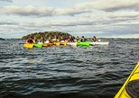 3-day kayaking adventure around Vaxholm in Stockholm Archipelago - self guided