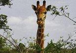 Safari & Golf Weekend - 2 days tour, Luanda, ANGOLA