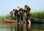BIRDWATCH - Premium guided canoe tour at Cape Vente, Nemunas Delta Regional Park