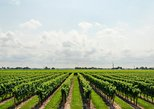 USA - Washington DC: Wine Tour