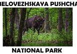 Europe - Belarus: Private tour from Brest city to Belovezhskaya Pushcha national park