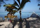 6.5-Hour Catamaran Cruise to Stingray City and Rum Point Beach