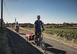 Full-Day Electric Bike Wine Tour in Saint-Emilion with Many Tastings