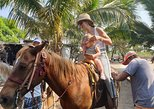 Mexico - Guerrero: Horseback Riding - Cliff Divers Exhibition - Shopping - Mexican Lunch & Drinks