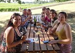 Excursão de vinhos e gastronomia em Saint-Emilion com degustações saindo de Bordeaux. Bordeaux, FRANCIA