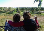 Niagara Full-Day Wine Tour with Lunch and Boat Ride Upgrade