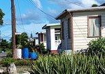 Barbados 5 hour Private Island Tour