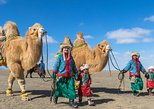 13 Days Ice and Camel Festival 2020