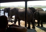 2 Days 2 Nights Camping Safari in Chobe National Park