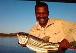 Zambezi Tiger Fishing Full Day