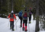 Guided snowshoe hike at Norefjell