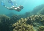 OnBird - Private Snorkeling trip - Welcome Gloaming in the An Thoi Archipelago