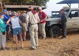 Africa & Mid East - Botswana: chobe national park 9hr full day game drive