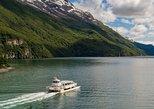 Visita área Gran Glaciar Vespignani - Navegación y trekking. El Chalten, ARGENTINA