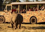 join an overnight safari at werribee open range zoo