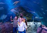SEA LIFE London Aquarium Admission Ticket