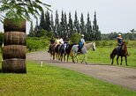 go horseback riding at carolina, puerto rico