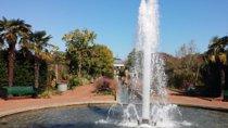 Daniel Stowe Botanical Garden General Daytime Admission Pass, North Carolina, Attraction Tickets