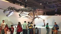 Houston Museum of Natural Science General Admission, Houston, Museum Tickets & Passes