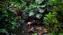 Victoria Butterfly Gardens, Vancouver Island, Attraction Tickets