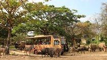 Full Day Bali Safari and Marine Park Dragon Package, Bali, Zoo Tickets & Passes