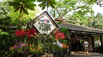 National Orchid Garden Admission Ticket, Singapore, Attraction Tickets