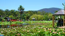 Blue Lotus Gardens Entrance Ticket in Melbourne, Yarra Valley, Attraction Tickets