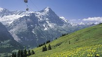 Mt First Admission in Grindelwald, Grindelwald, Attraction Tickets