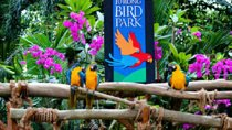 Jurong Bird Park Admission Ticket, Singapore, Attraction Tickets