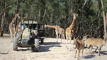 Badoca Safari Park Entrance Ticket, Setubal District, Attraction Tickets