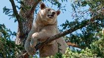 BC Wildlife Park, Kamloops, Kamloops, Nature & Wildlife