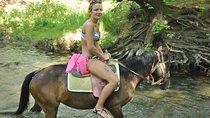 Horse Safari From Marmaris, Marmaris, Horseback Riding