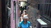 Favela Walking Tour in Rio de Janeiro, Rio de Janeiro, Cultural Tours