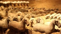 Private Xi'an Tour: Terracotta Warriors, Hanyangling Museum, Cave Homes, Xian, Private Sightseeing...