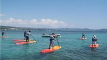 Stand Up Paddle Board Rental in La Ciotat, French Riviera, Other Water Sports