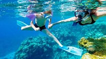St Maarten Shore Excursion : Speed Boat 3 Hours Snorkeling and Beach Tour, Philipsburg, Snorkeling